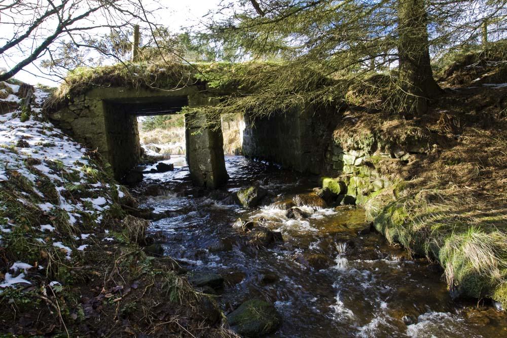 Old bridge at Den of Auldmaling, near Dudwick