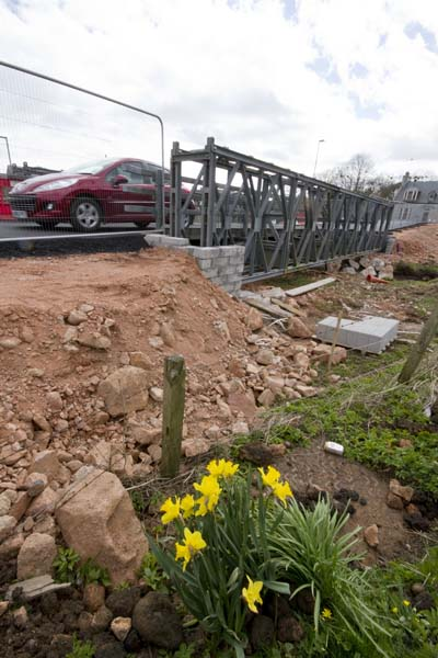 A little clup of daffodils have survived all the construction work on the new bridge at Hatton