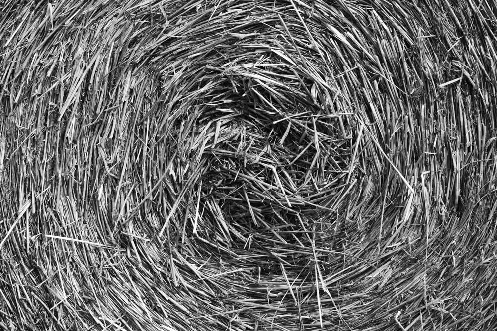 Straw Circle