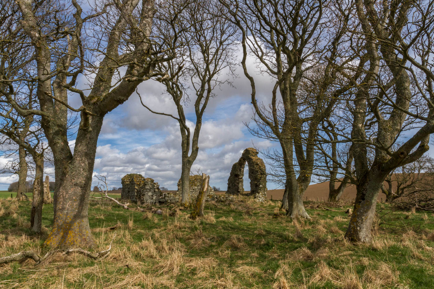 Ruins of the 15th Century St Adamnan's Chapel at Leask, near Ellon.