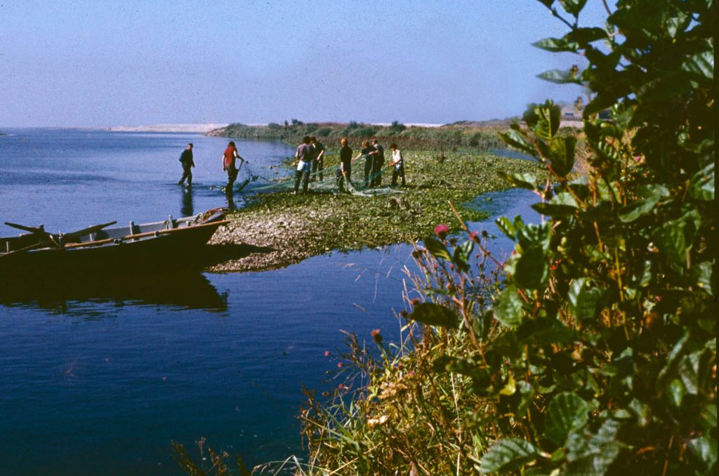 Salmon fishermen at the mouth of the River Spey in the 1970s